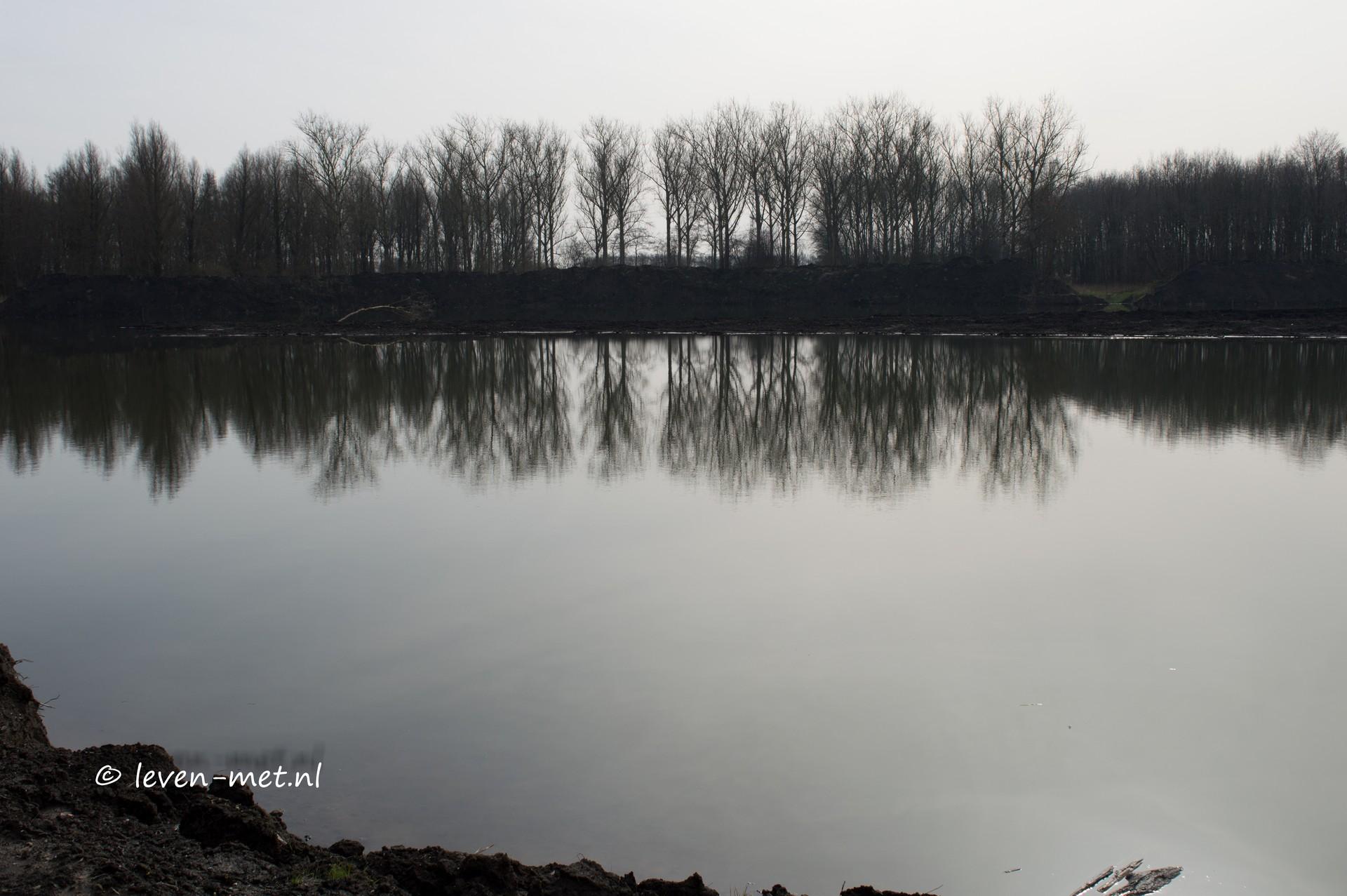 Hollandsehout de Krakeendhut en Oostvaardersplassen