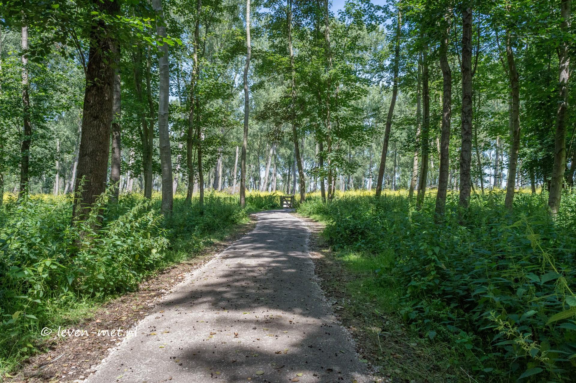 Oostvaardersbos & wandelpaden deel II