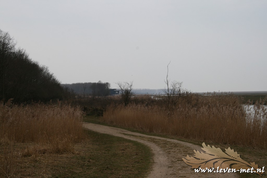 Dagrapport Oostvaardersplassen 24-03-2015